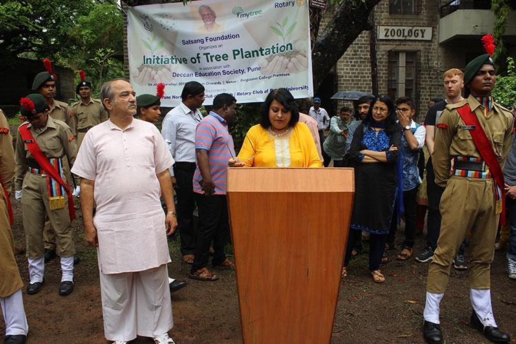 Tree Plantation 5